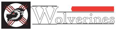 Wolverines Wheelchair Sports Association