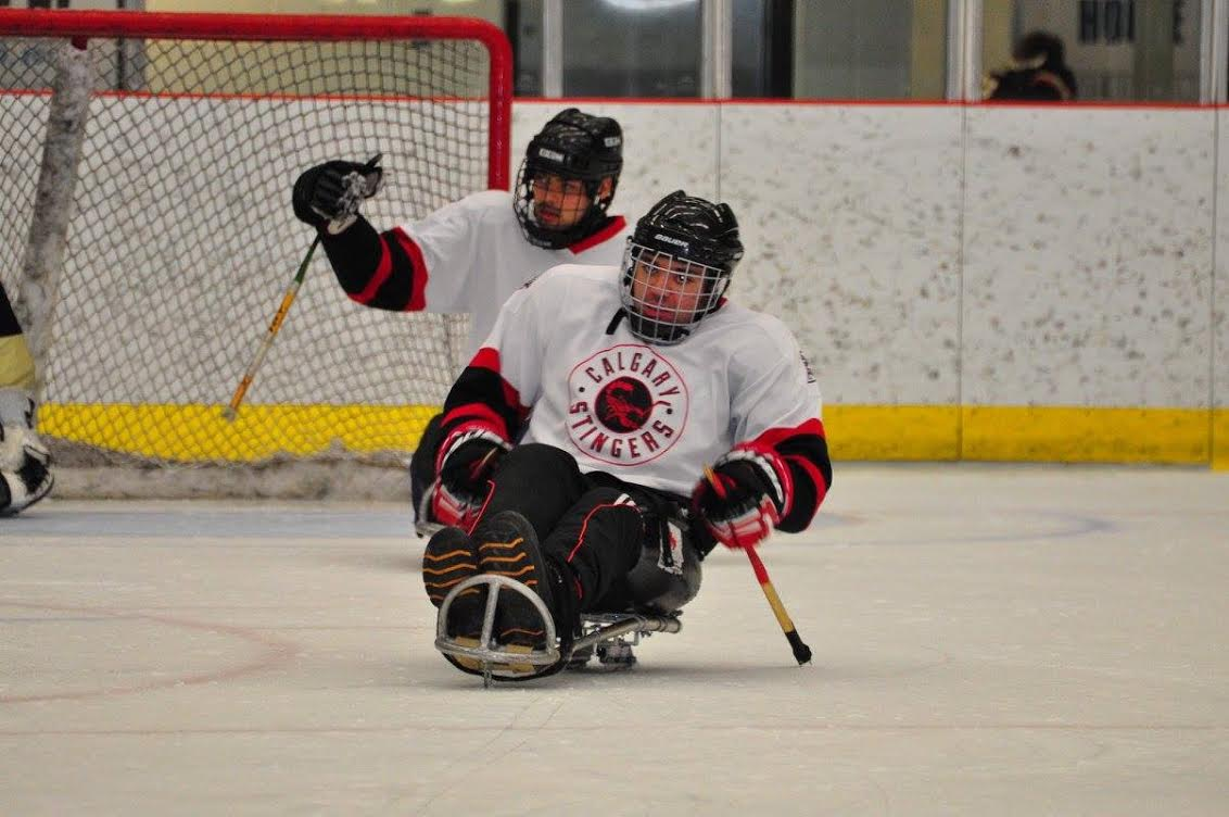 sledgehockey2
